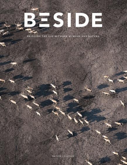 Beside N°4