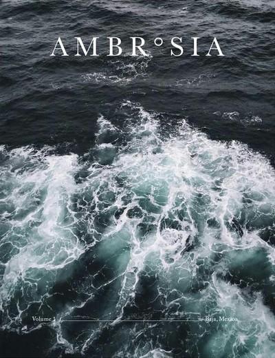 Ambrosia N°1 - Baja, Mexico