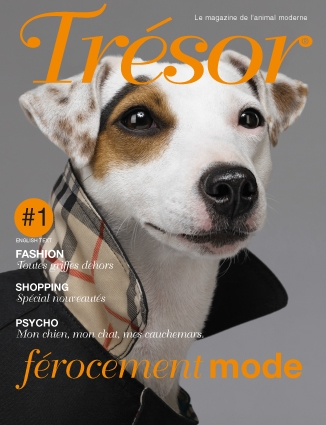Trésor Issue 1