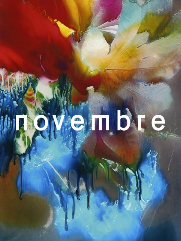 Novembre N°14-1