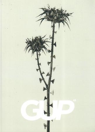 Gup N°45