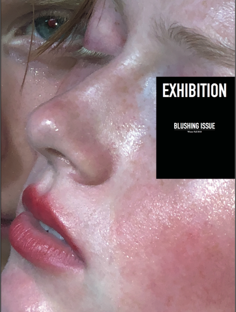Exhibition Issue 11-3
