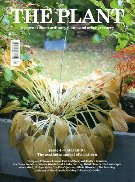 The Plant Journal N°4